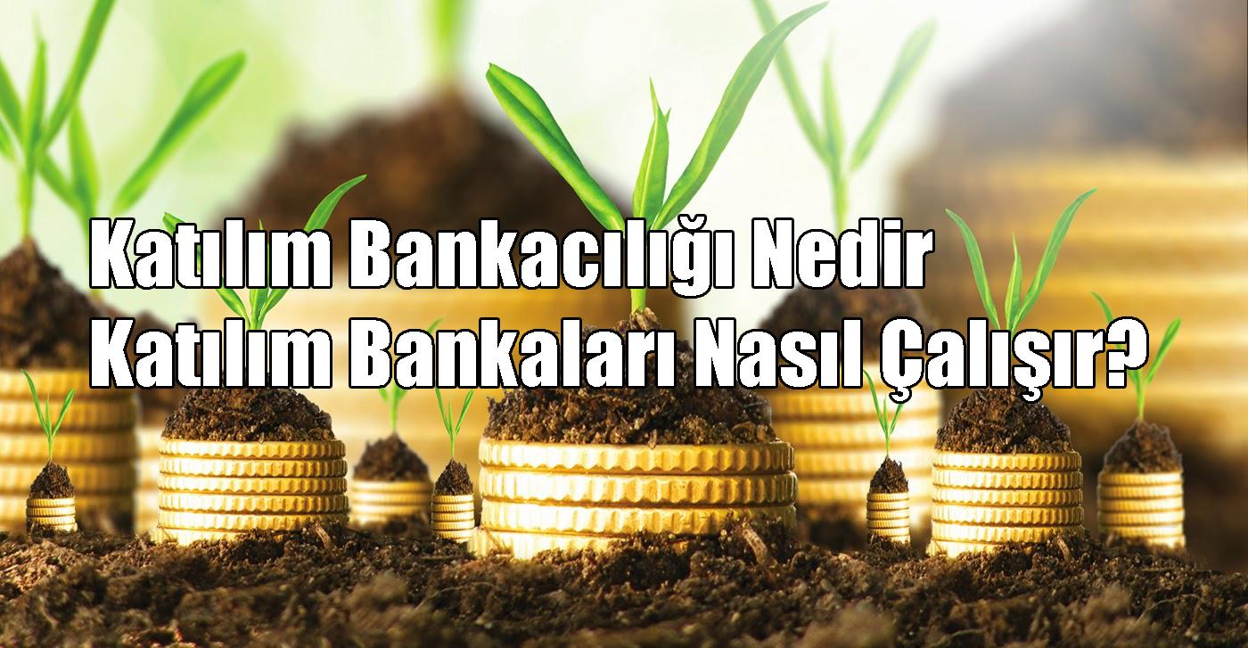 Katılım Bankacılığı Nedir, Katılım Bankaları Nasıl Çalışır?