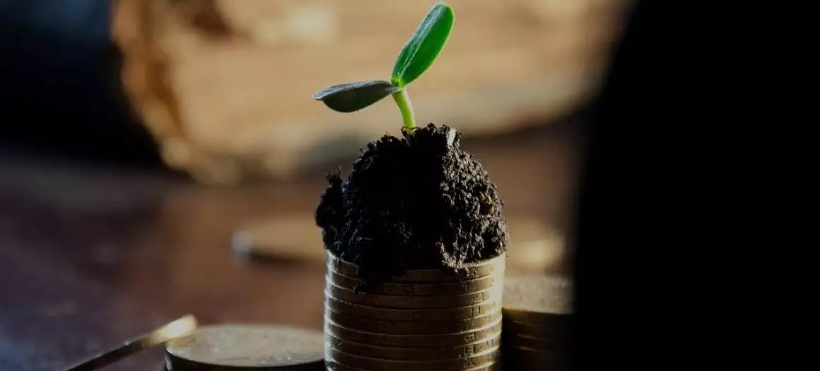Temettü Yatırımcılığı Nedir?